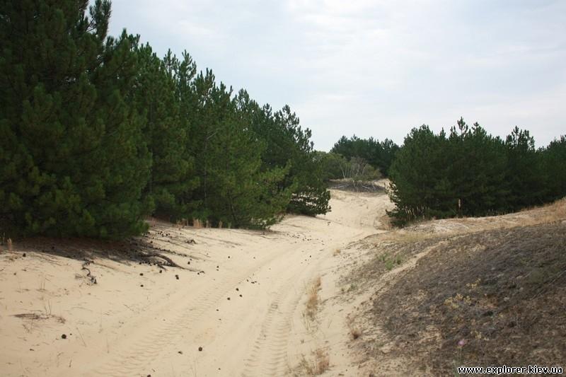 Дорога к пустыни