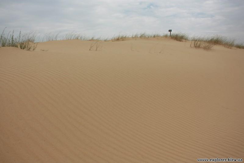 Бескрайние пески